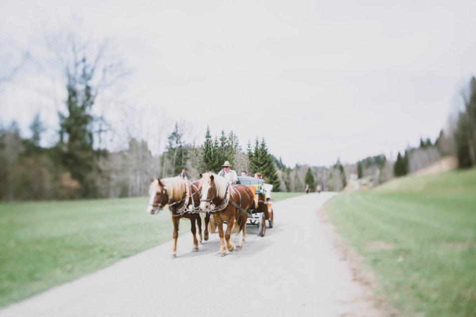 Hochzeit mit der Pferdekutsche
