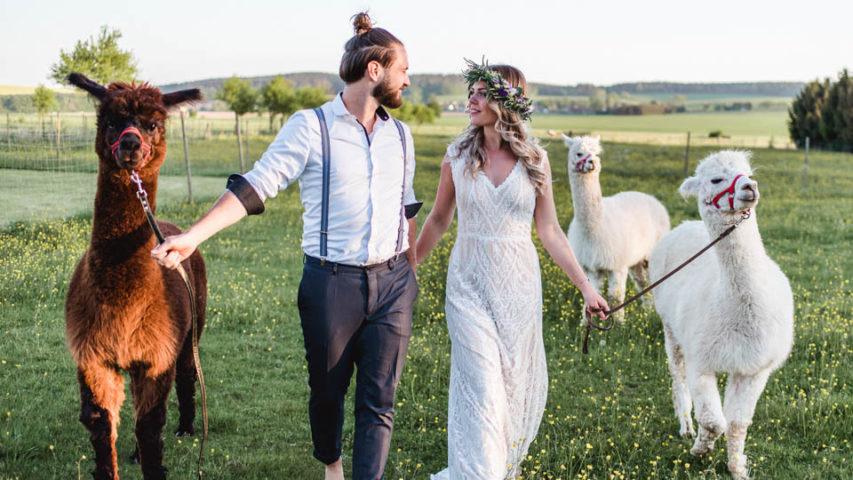 Alpaka Hochzeit auf der Wiese – Inspiration im Boho Chic