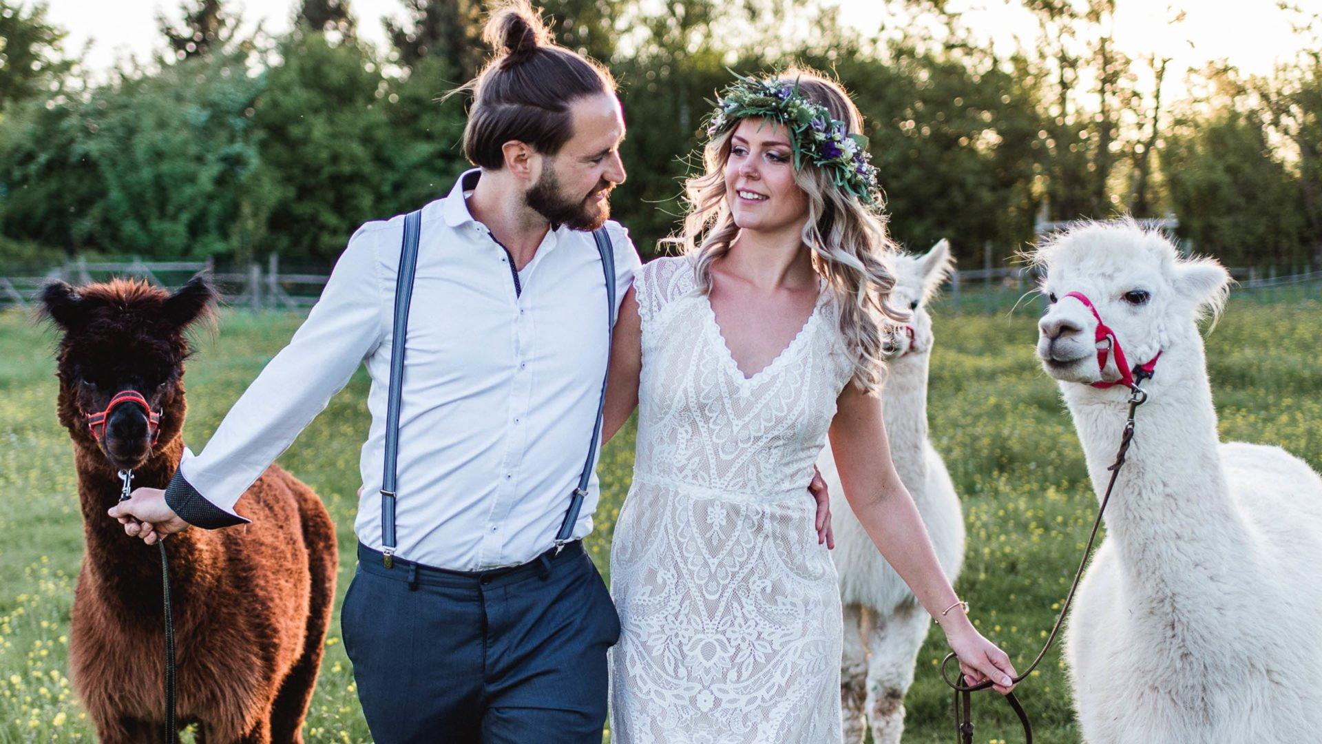 Brautkleid mit Spitze im Paisleymuster und Alpakas zur Hochzeit