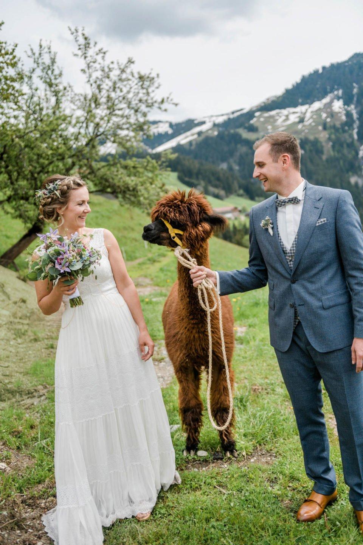 Hochzeit im Mai; Brautpaar mit Alpaka