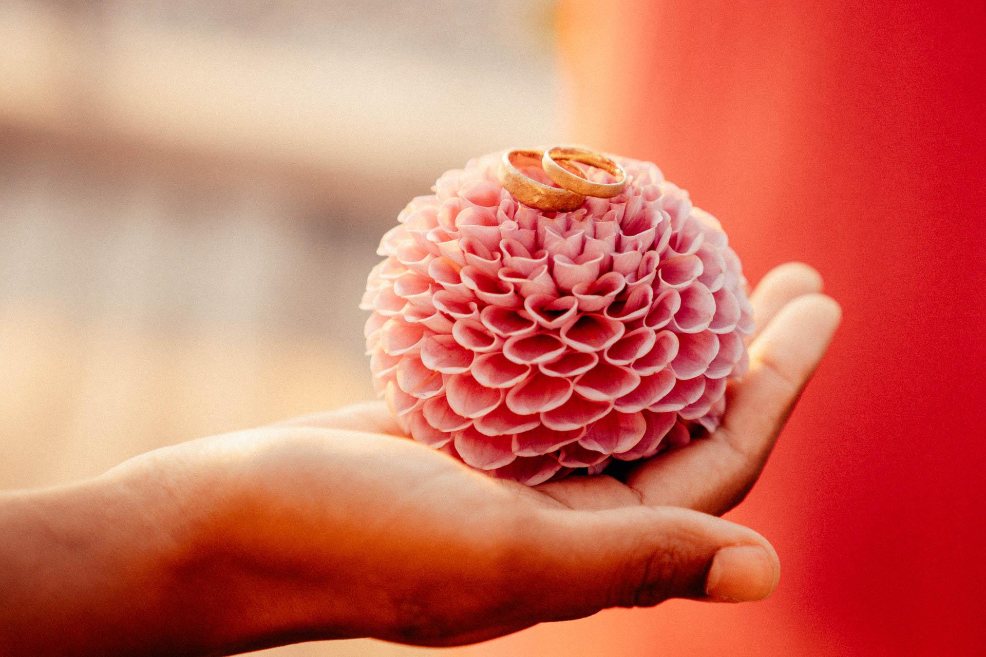 Eheringe liegen auf pinker Blume