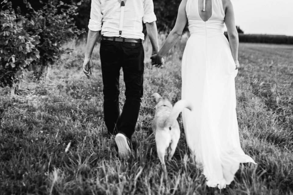 Hund unter Händchen haltendem Ehepaar auf der Wiese